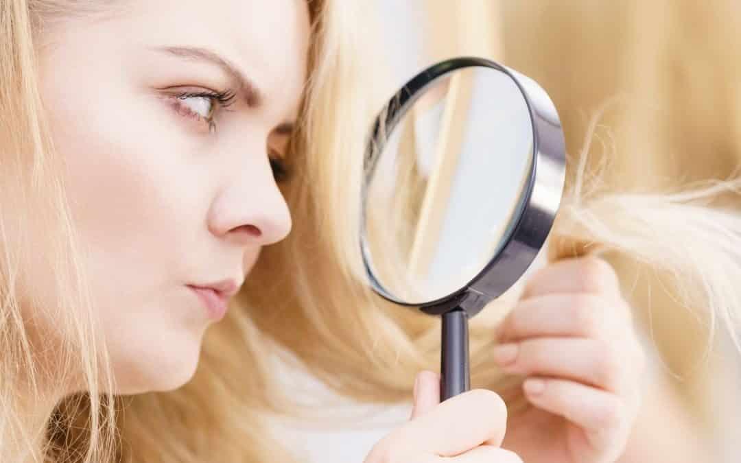 Haarbruch erkennen, langfristig behandeln und vorbeugen